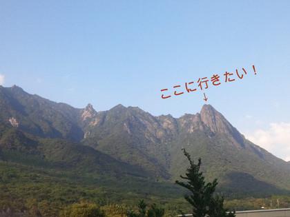 安針塚〜大楠山ハイキング: なん...